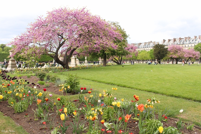 Jardin des Tuileries2